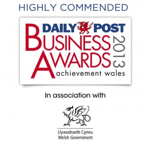 Daily Post Business Awards 2013