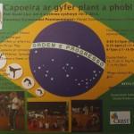 Capoeira Leaflet Welsh